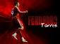 Fernando2BTorres2Bhd2Bwallpaper2B2012-20132B21